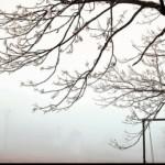 vreme rece7