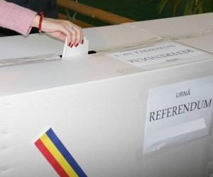 urna-referendum-ghimpele